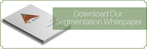 Download Our Segmentation Whitepaper