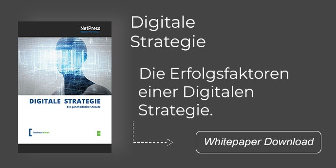 NetPress Whitepaper Digitale Strategie ganzheitlicher Ansatz