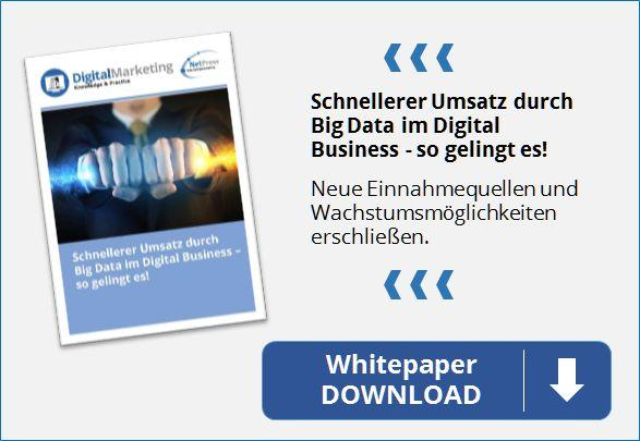 NetPress Whitepaper Digitale Strategie mit Big Data