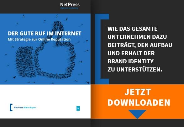 NetPress Whitepaper Strategie zur Online Reputation