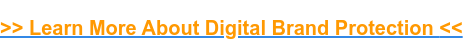 >> Learn More About Digital Brand Protection<<