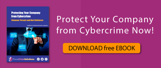 Get our latest E-book entitled Protecting  Your Company from Cybercrime now!