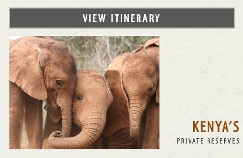 Kenya's Private Reserves Safari