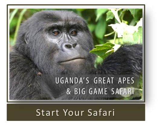 Uganda's Great Apes & Big Game Safari