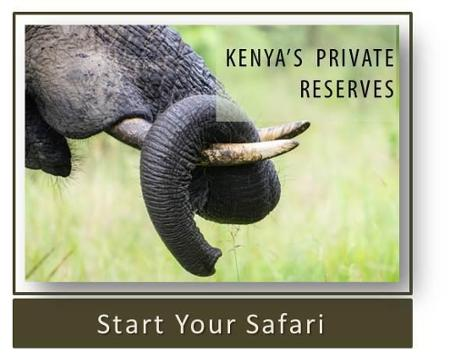 Kenya's Private Reserves Safari