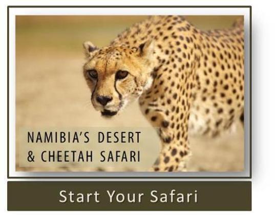 Namibia's Desert & Cheetah Safari
