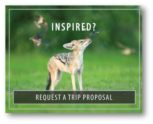 Bushtracks Expeditions - Request A Trip Proposal