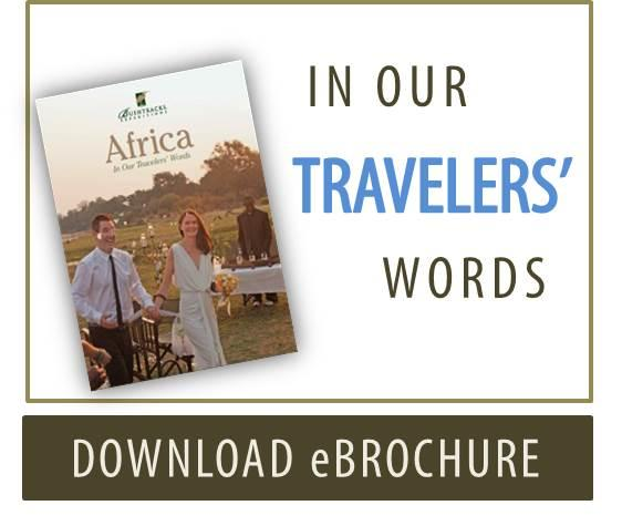 In Our Travelers' Words - Testimonials