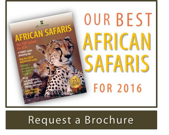 African Safaris Brochure