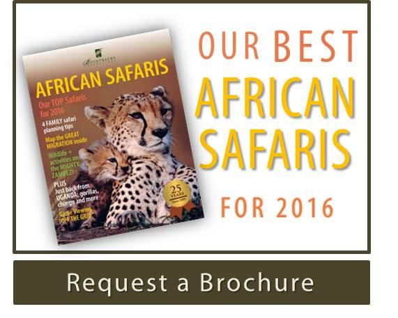 African Safaris Brochure