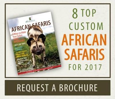 Request African Safaris Brochure
