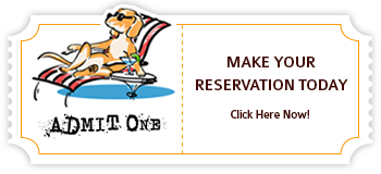 Make Your Reservation Today!