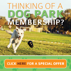 Thinking about a  Dog Park Membership? Click here for a special offer.