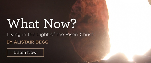 What Now? Living in the Light of the Risen Christ