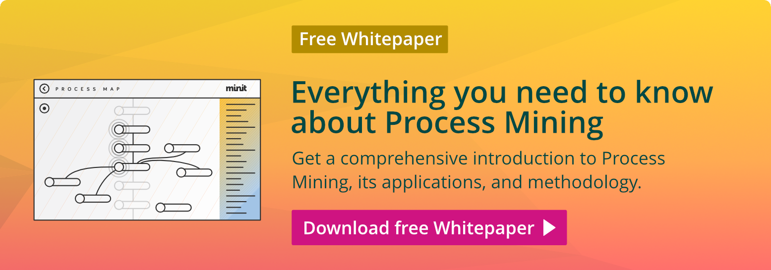 Free Whitepaper: Everything you need to know about Process Mining