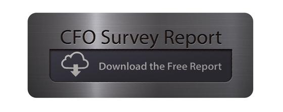2015-cfo-survey-report