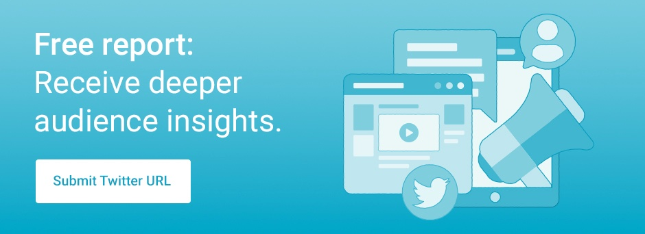 Audience Insights Twitter