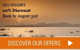 Discover our offers >
