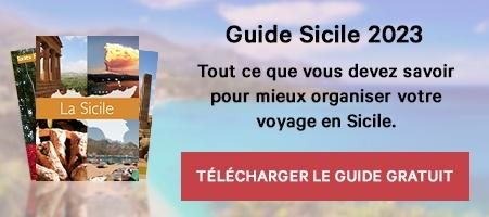 Téléchargez le guide gratuitement >