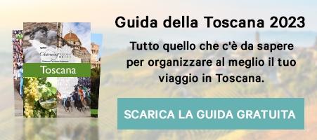 Scarica la Guida Viaggio della Toscana >