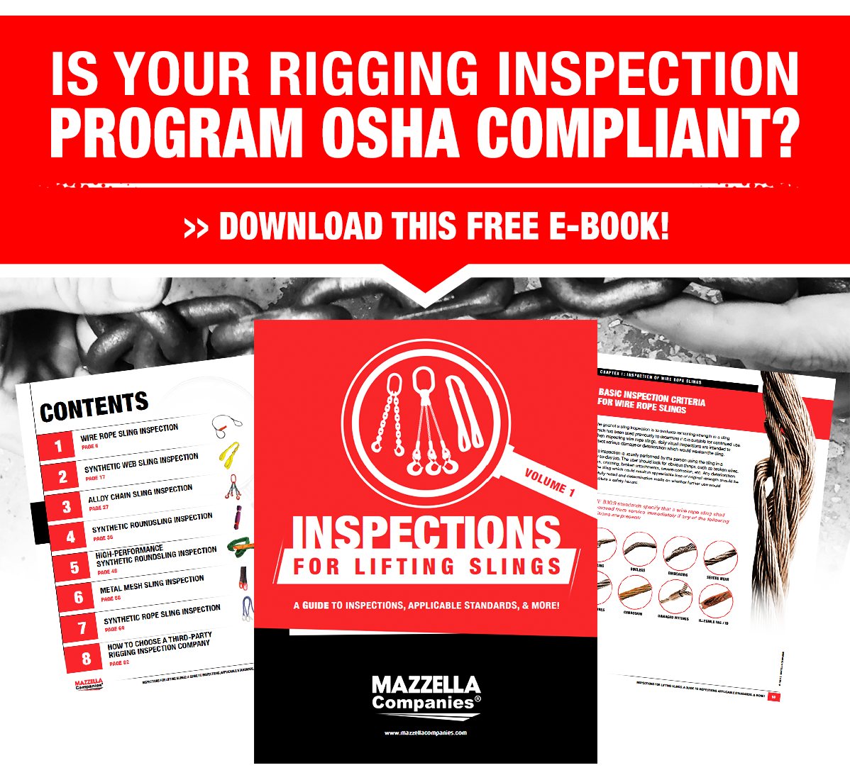 Download your free sling inspection e-book