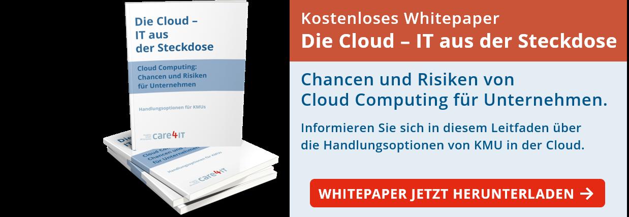 Die Cloud: IT aus der Steckdose. Chancen und Risiken von Cloud Computing für Unternehmen