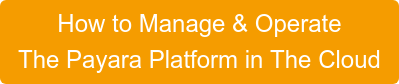 How to Manage & Operate  The Payara Platform in The Cloud