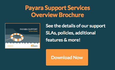 Download Payara Support Brochure