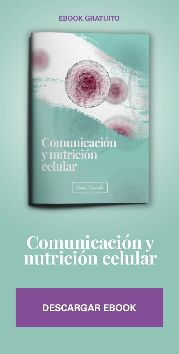 Comunicación y nutrición celular
