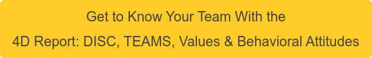 Get to Know Your Team With the 4D Report: DISC, TEAMS, Values & Behavioral Attitudes