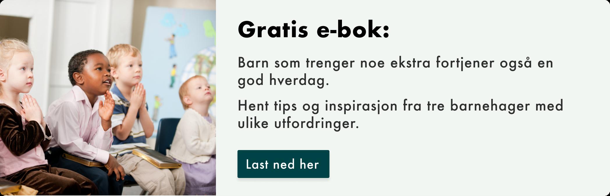 Last ned gratis e-bok: Lær av tre ulike barnehager og deres utfordringer.