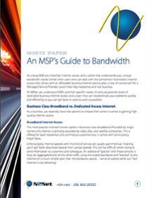 An MSP's Guide to Bandwidth