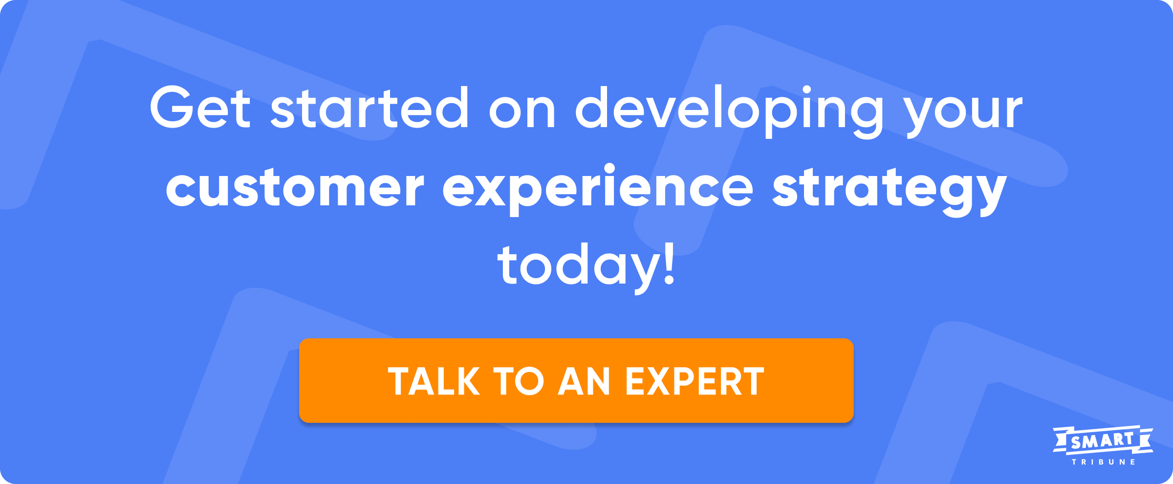 customer experience strategy demo