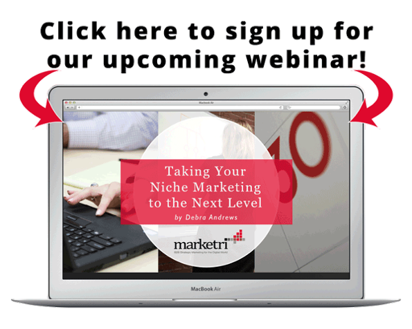 what is niche marketing webinar