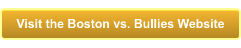 Visit the Boston vs. Bullies Website