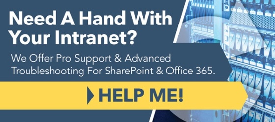 Learn About Our Intranet Support Services