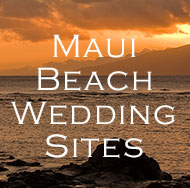 Get Maui Beach Wedding Locations