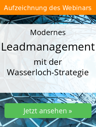 Webinar Leadmanagement