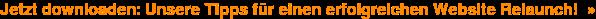 Jetzt downloaden: Unsere Tipps für einen erfolgreichen Website Relaunch! »