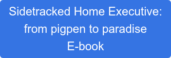 Sidetracked Home Executive: from pigpen to paradise E-book