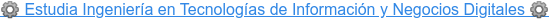 ️ Estudia Ingeniería enTecnologías de Información y Negocios Digitales ️