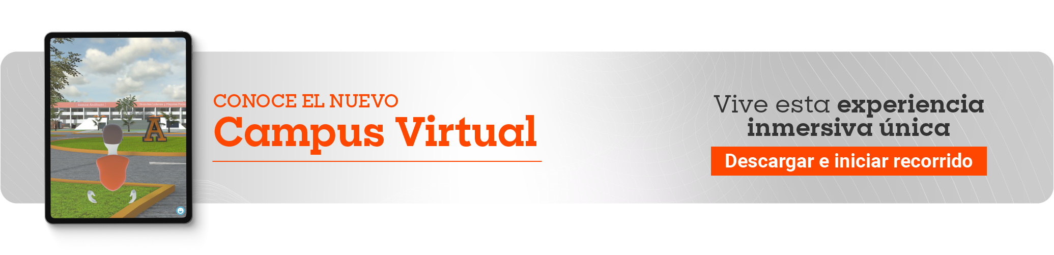 Campus Virtual_descarga