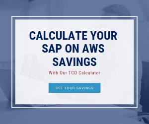 SAP TCO Ad
