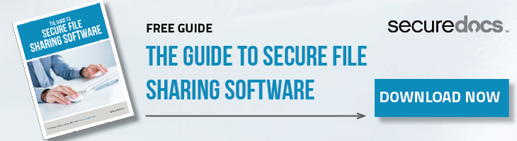 Download the Guide to Secure File Sharing Software