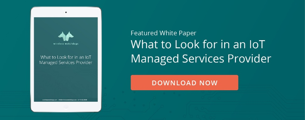 Download Now: What to Look for in an IoT Managed Services Provider