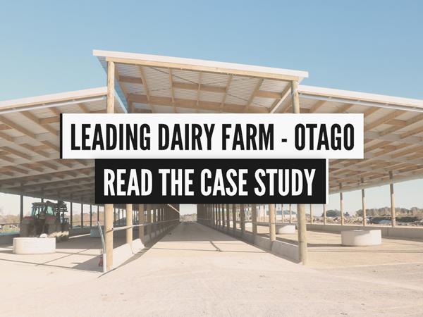 leading otago dairy farm case study