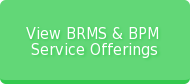 View BRMS & BPM   Service Offerings