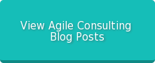 View Agile Consulting  Blog Posts