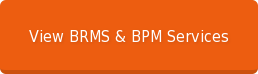 View BRMS & BPM Services
