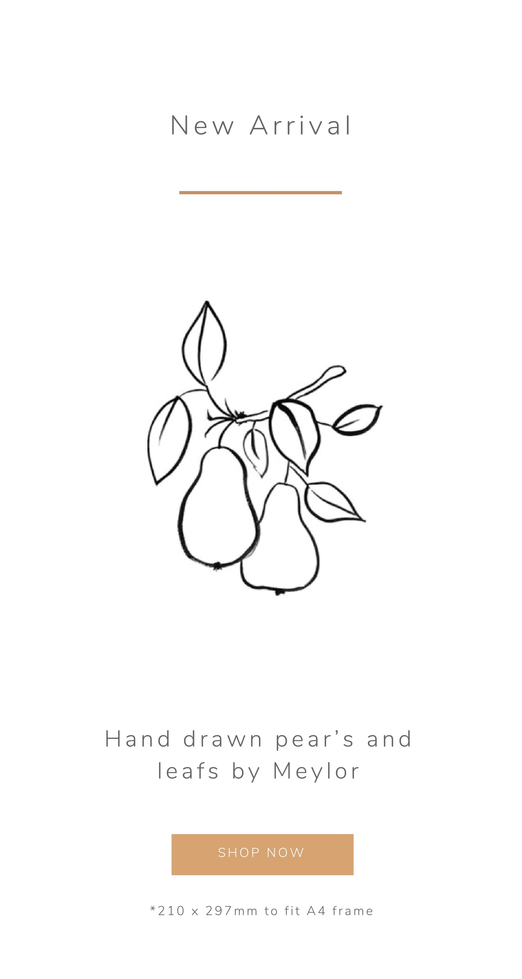 Prints, fashion, pears, frame